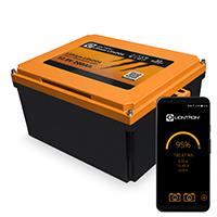 LIONTRON 12.8V 200Ah Lithium LiFePO4 Arctic Wohnmobil-Untersitz-Batterie mit Bluetooth